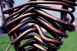 Steel Rib Cage