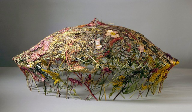 sculpted vessels - pressed flowers Ignacio Canales Aracil